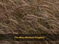 The Mary-Blessed Kingdom