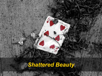 Shattered Beauty