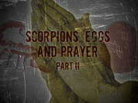 Scorpions, Eggs and Prayer, Part 2