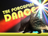 The Porcupine Dance