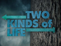 Two Kinds of Life