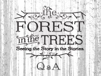 The Forest in the Trees: Q&A